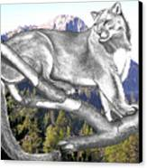 Cougar Mountain Canvas Print by Russ  Smith