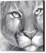 Cougar Spirit Canvas Print