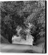 Country Drive Canvas Print by Andrew Soundarajan