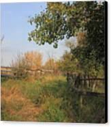 Country Lane Canvas Print by Jim Sauchyn