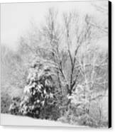 Country Winter Canvas Print by Kathy Jennings
