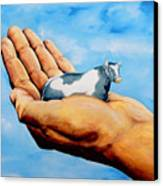 Cow In Hand Canvas Print