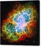 Crab Nebula Canvas Print by Don Hammond