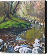Creek In The Woods Canvas Print by Ylli Haruni