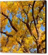 Crisp Autumn Day Canvas Print
