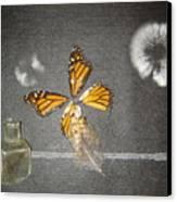 Cross Wind Canvas Print