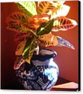 Croton In Talavera Pot Canvas Print