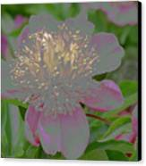 Crystalline Flower Canvas Print