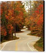 Curvy Fall Canvas Print by Adam Romanowicz