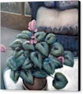 Cyclamen And Wicker Canvas Print