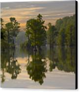 Cypress In Lake Reflection Canvas Print