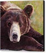 Da Bear Canvas Print by Billie Colson