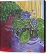Dads Violets Canvas Print