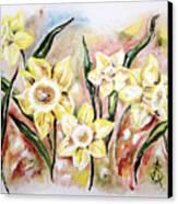 Daffodil Drama Canvas Print