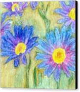 Daisey Field Canvas Print