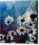 Daisies 59060 Canvas Print