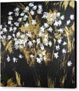 Daisies In Gold Abstraction Canvas Print