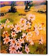 Daisies In The Sun Canvas Print