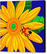 Daisy And Shieldbug Canvas Print