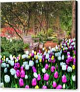 Dallas Arboretum Canvas Print by Tamyra Ayles