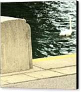 Danube River Swan Canvas Print
