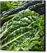 Dark Green Leafy Vegetables Canvas Print