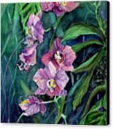 Dark Orchid Canvas Print