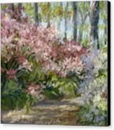 Daydream Canvas Print by L Diane Johnson