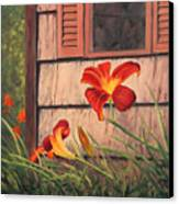 Daylilies At The Shed Canvas Print by Elaine Farmer