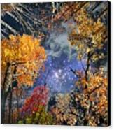 Deep Canopy Canvas Print