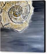 Deep Ocean Seashell Canvas Print by Leslye Miller