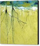 Deep Roots Canvas Print