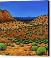 Desert Afternoon Canvas Print