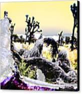 Desert Landscape - Joshua Tree National Monment Canvas Print