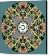 Desert Mandala Canvas Print