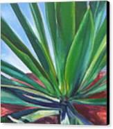 Desert Plant Canvas Print