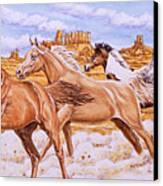 Desert Run Canvas Print by Richard De Wolfe