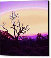 Desert Sunset With Silhouetted Tree 2 Canvas Print