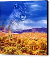 Desert Visions Canvas Print by Lorraine Foster
