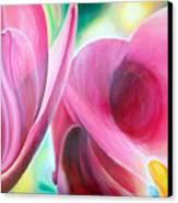 Detail Canvas Print by Muriel Dolemieux