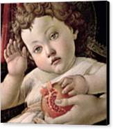 Detail Of The Christ Child From The Madonna Of The Pomegranate  Canvas Print