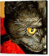 Diego The Cat Canvas Print