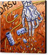Dmso Canvas Print