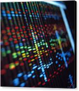 Dna Sequence On A Computer Monitor Screen Canvas Print by Tek Image