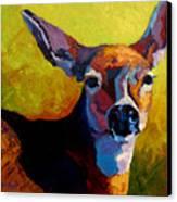 Doe Portrait V Canvas Print by Marion Rose