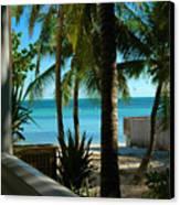 Dog's Beach Key West Fl Canvas Print by Susanne Van Hulst