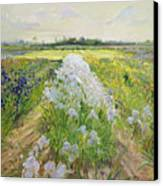 Down The Line Canvas Print by Timothy Easton