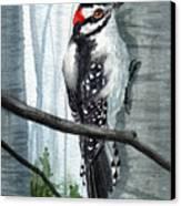 Downey Woodpecker Canvas Print