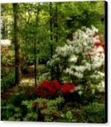 Dreaming Of Spring Canvas Print by Sandy Keeton