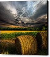 Drought Canvas Print by Phil Koch